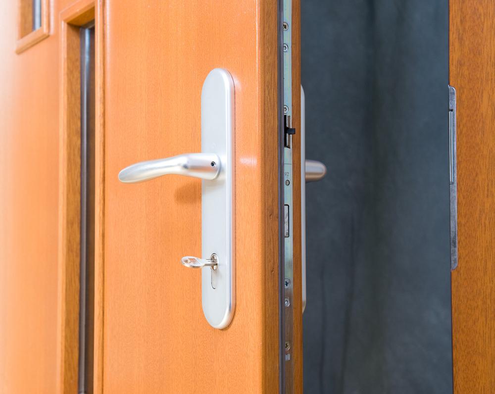 Vchodove Dvere V Provedeni Euro 68